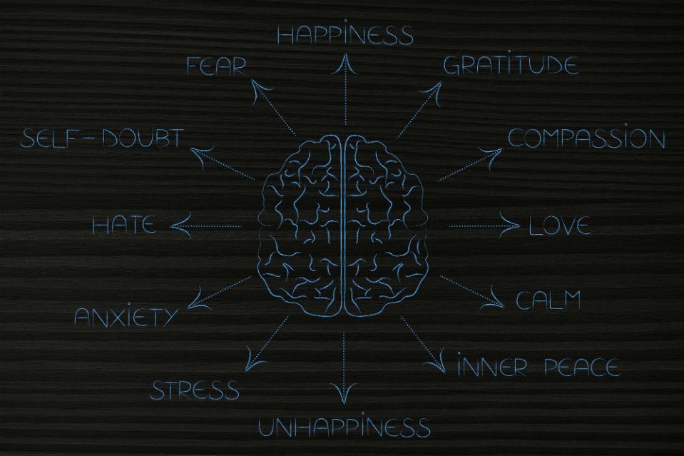 Los datos influyen en la toma de decisiones y en las emociones